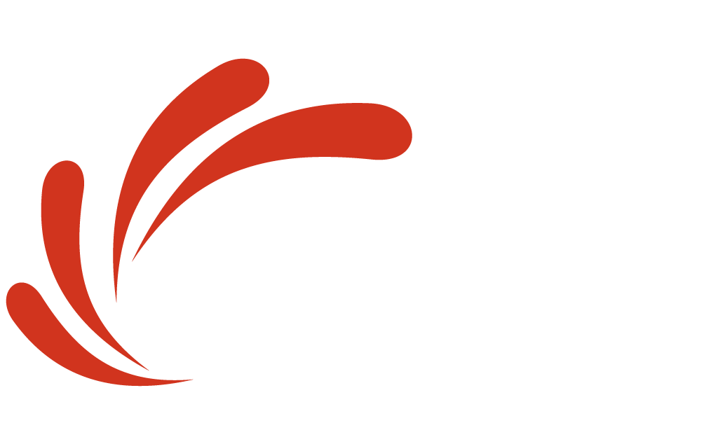 Viaud Consulting